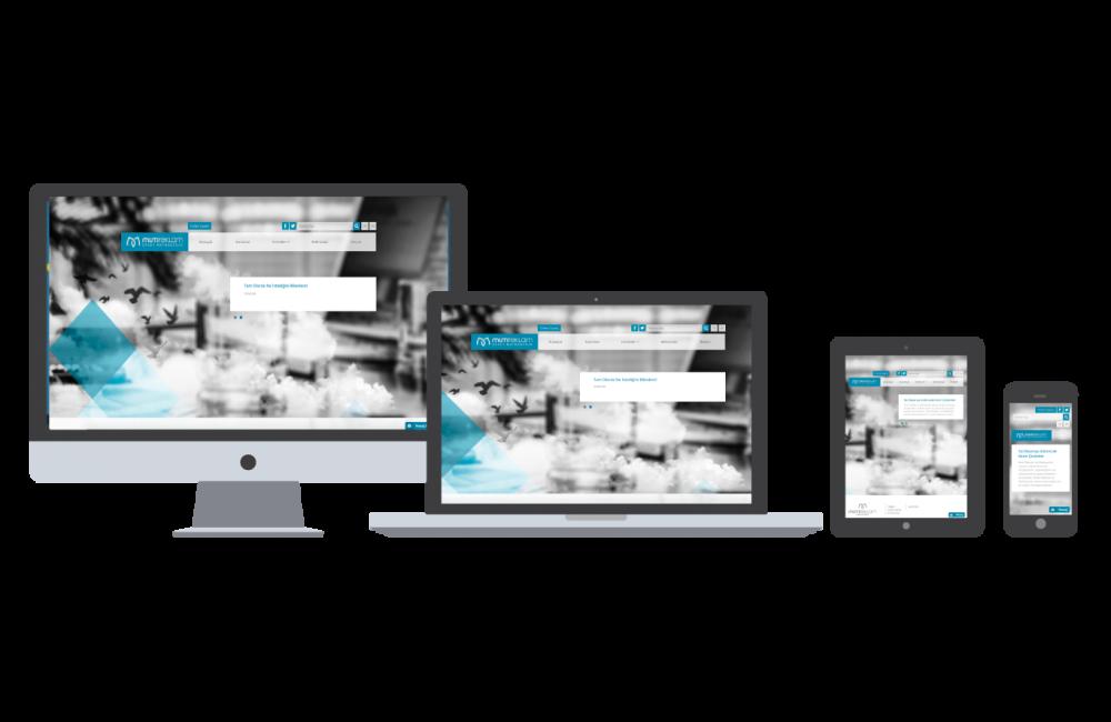 Sakarya Web Tasarım ve Web Programlama alanında profesyonel olarak çalışan bir grup gencin bir araya gelmesi ile oluşmuş bir ekiptir. Amacımız her alanda hi